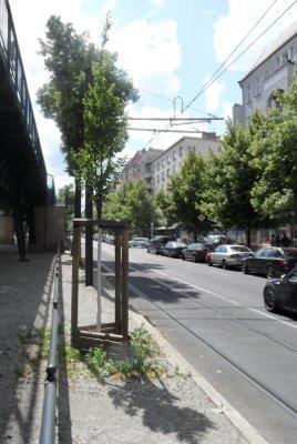 Baumreihe eingezwängt zwischen Hochbahn und Straße