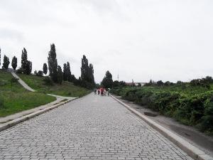 Blick über den Hauptweg in Richtung Süden