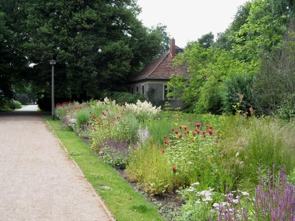 Botanischer Volkspark Blankenfelde-Pankow: Staudenpflanzungen
