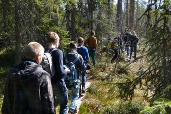 Wanderung im Hamra Nationalpark in Schweden - Foto: Anna Geisler