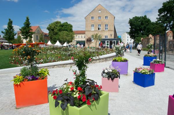 Blick zur Blumenhalle / Foto: Stefan Gloede