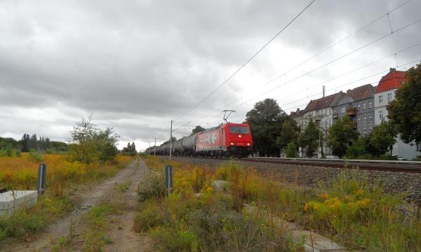 Kesselwagenzug iauf Leerfahrt nach Schwedt/Oder