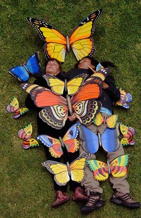 Javier und Gundula Schulze Eldowy, Schmetterlinge