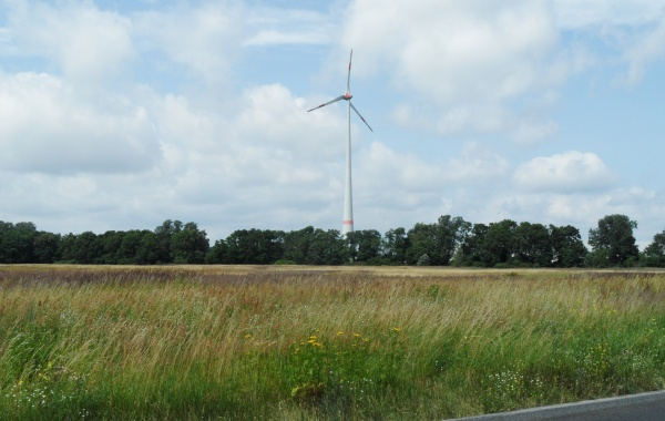Windkraftanlage in Pankow auf ehemaligen Rieselfeldern