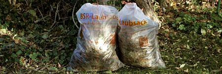 Laubsack - Foto: BSR
