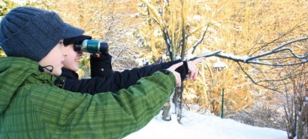 Wintervogelzählung mit dem Fernglas - Foto: Annette Wolf
