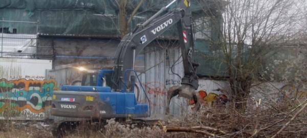Rodung am Mauerpark am 3.2.2014