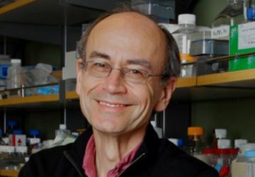 Dr. Thomas C. Südhoff