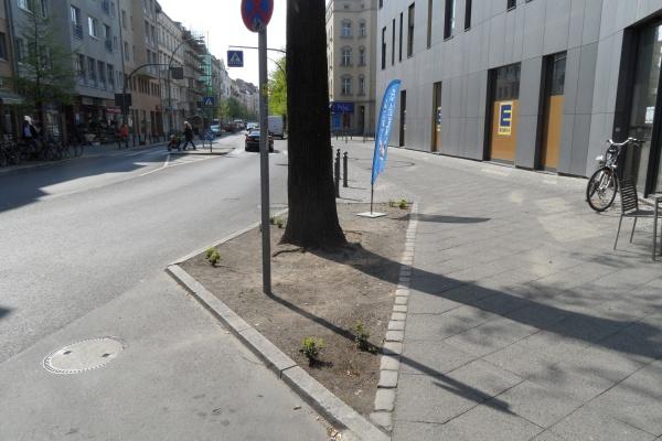 Garbátyplatz; Pankows peinlichste Baumscheibe