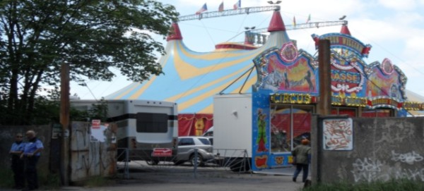 Zirkus William unter Polizeischutz