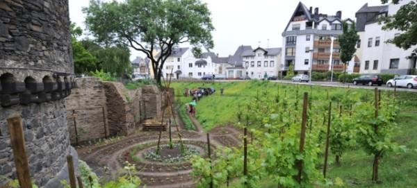 """""""Essbare Stadt"""" Andernach"""