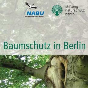 Baumschutz in Berlin