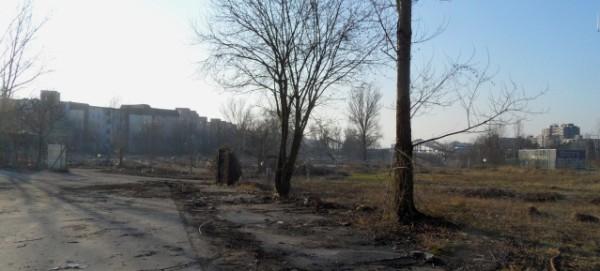 Mauerpark Nordfläche