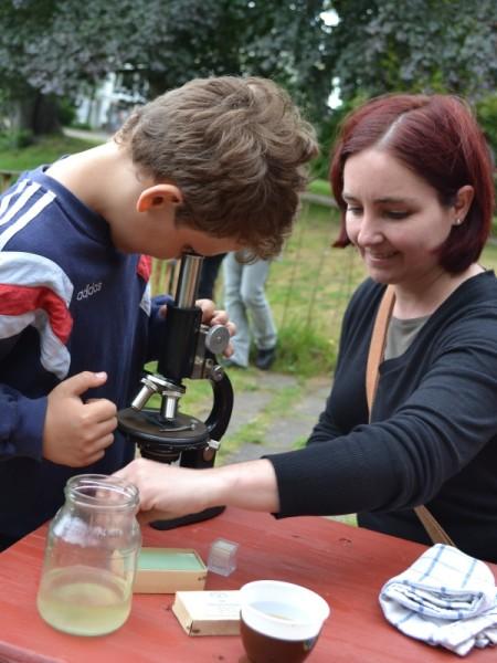 Leben im Wassertropfen im Mikroskop