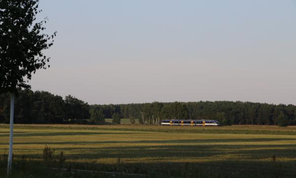 Heidekrautbahn fährt durch das Storchenrevier
