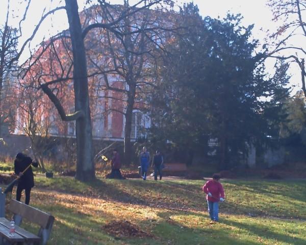 Pflegeeinsatz im Schlosspark Buch