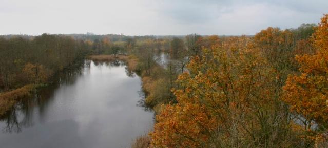 Köppchensee im Herbst - Foto: NABU, Scharon