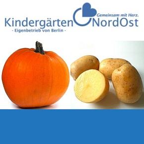 "Kindergarten ""Tausendfüßer"""