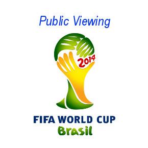 Fussball-WM2014