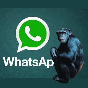 Whatsapp - Whatsape?