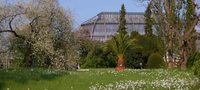 Botanischer Garten - Schaugewächshaus
