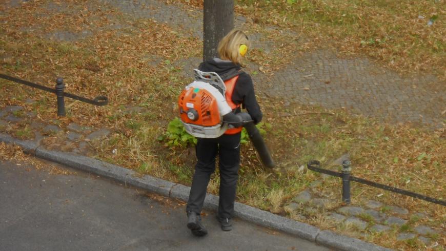 Der Herbst kommt mit Laubblasgeräte-Lärm