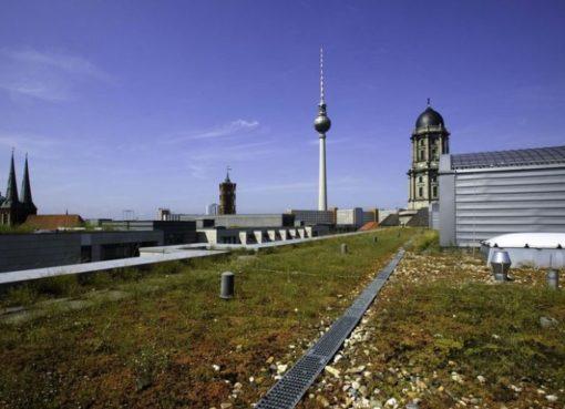 Begrüntes Dach der Unternehmenszentrale der Berliner Wasserbetriebe