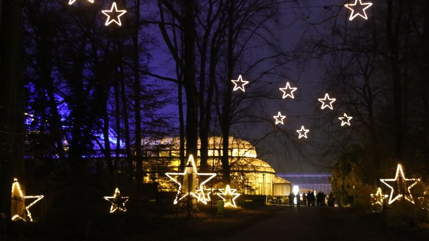 Christmas Garden Berlin 2016 © sceene.berlin