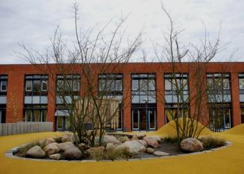 Grundschule am Hohen Feld