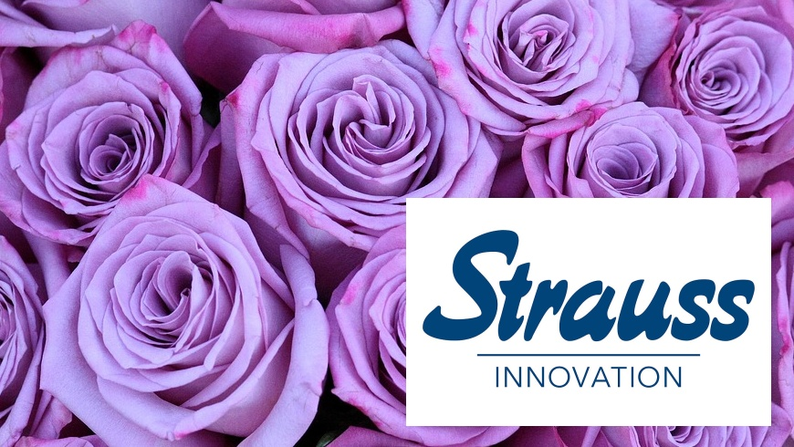 Strauss Innovation schliesst