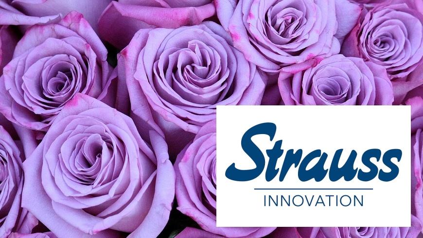 Strauss Innovation schliesst