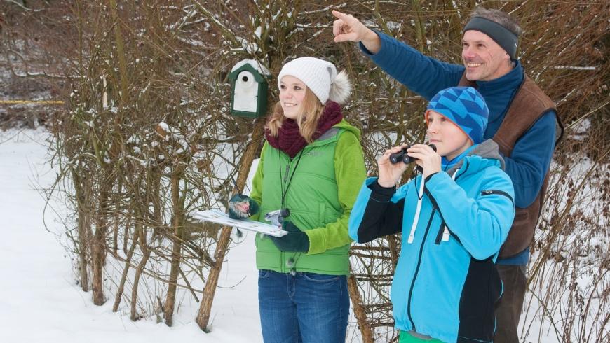 Stunde der Wintervvögel