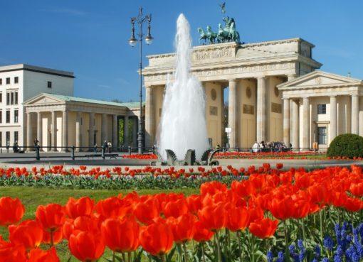 Brandenburger Tor mit Tulpen