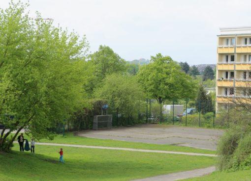 Putzaktion am 6.5.2017 auf dem Brennerberg