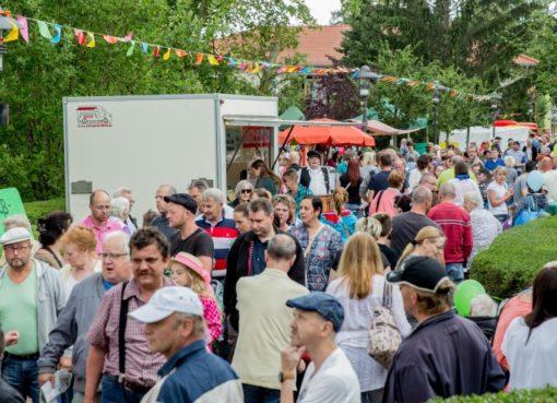 Sommerfest in der Albert Schweitzer Stiftung