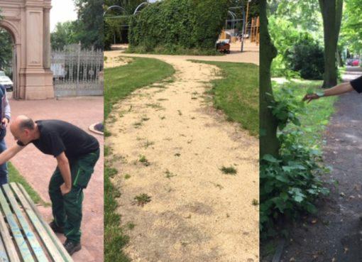 Bürgerpark-Aktion am 15.7.2017
