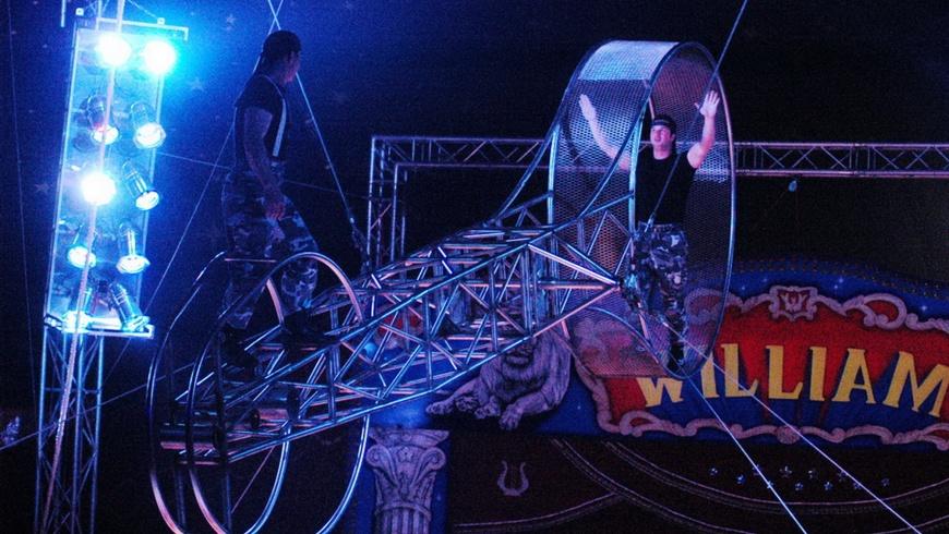 Circus William in Pankow