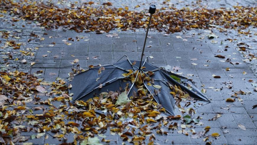 Regenschirm vom Winde verweht