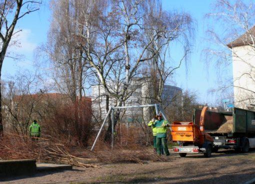 Deutsche Wohnen: Rodungsarbeiten