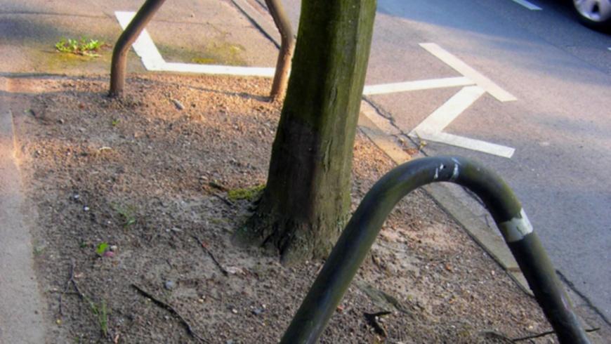 Baumscheibe in Grau