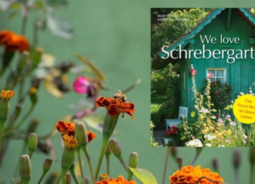 """We love Schrebergarten"""