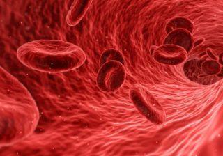 Blutzellen in der Blutbahn