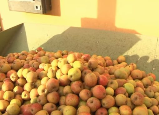 Apfelsaft-Kelterei