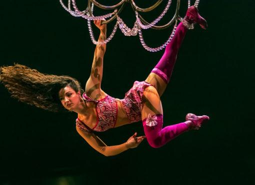 Akrobatik an der Seil-Leiter in der Show CORTEO - Foto: Circque du Soleil