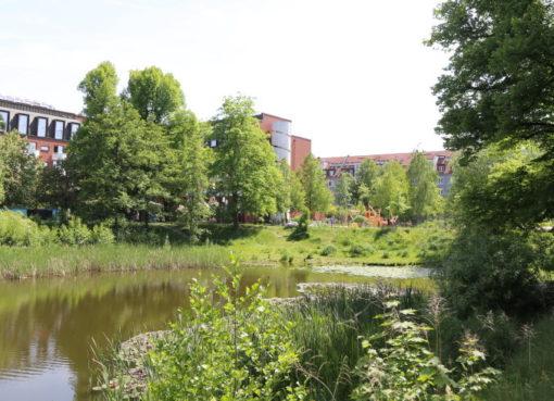 """""""Spielplatz am Goldfischteich"""""""