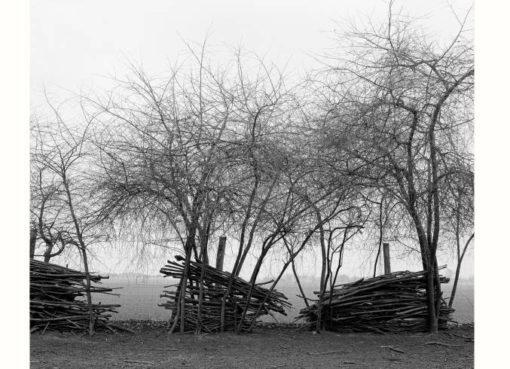 Fotoausstellung Galerie Amalienpark