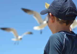 Kinder- und Jugendreisen